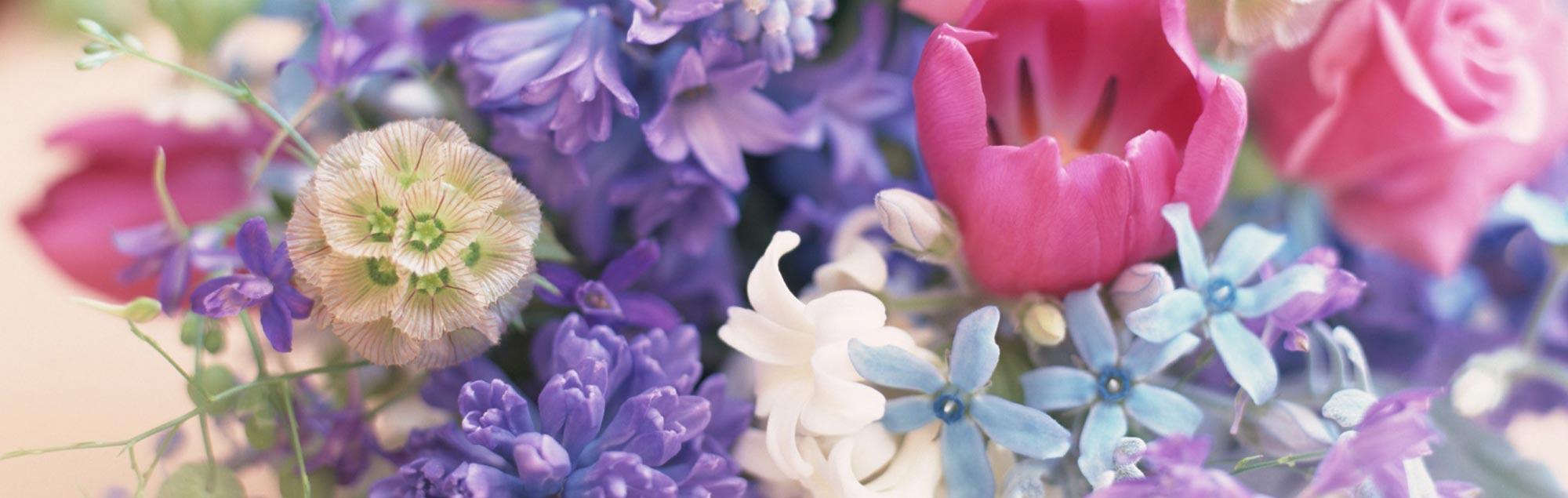 Slider-bloemen
