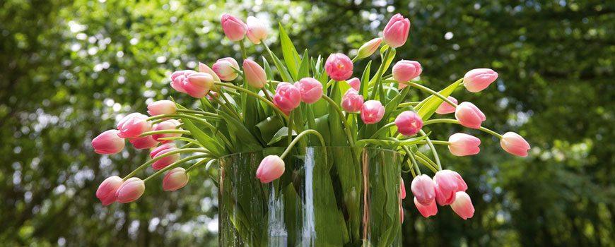 180201_Tulpenboeket_HJdeMooij