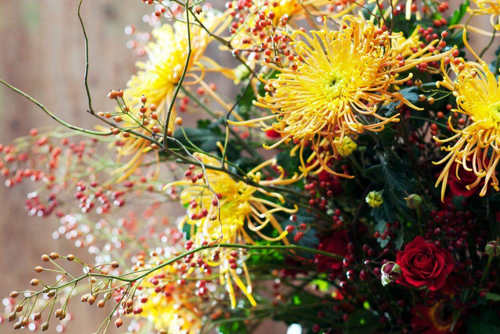 Bloemengroothandel h.j. de mooij al meer dan 40 jaar bloemen van
