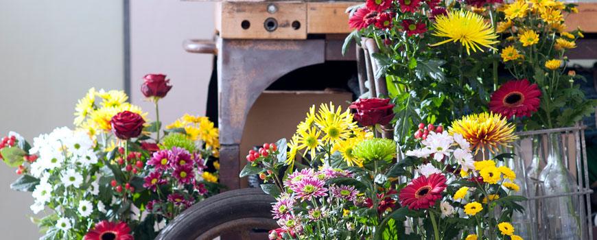Herfstbloemen HJ de Mooij