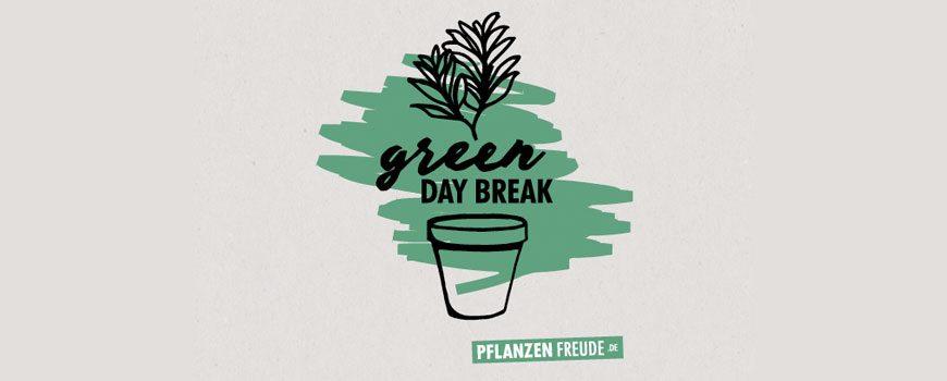 Green Day Break