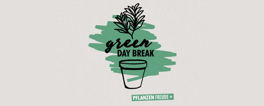 Green Day Break